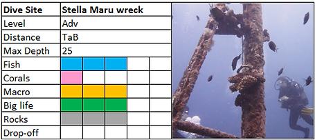Stella Maru Wreck Scuba Diving Mauritius site