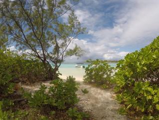 Mauritius reopening