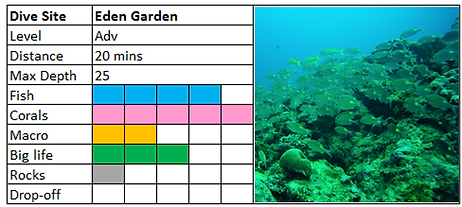 Eden Garden Scuba Diving Site Mauritius