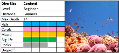 Confetti Bay Scuba Diving Mauritius site