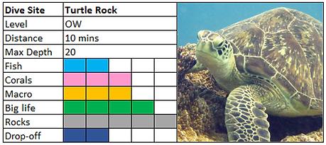 Turtle Rock Scuba Diving Mauritius site
