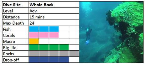 Whale Rock Scuba Diving Mauritius site