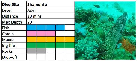 Shamenta Scuba Diving Mauritius site