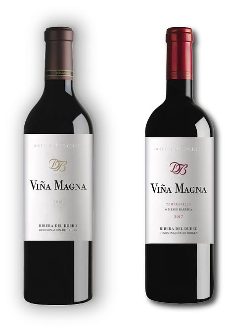 VIÑA_viña magna, dominio basconcillos, ribera del duero, parker, peñín, pipo abbad, gloops, diseño etiquetas, marketing bodegas, tempranillo