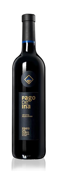 botella_pagodeina.png