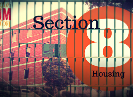 Single Mom Prison Nation: Free Section 8 Housing