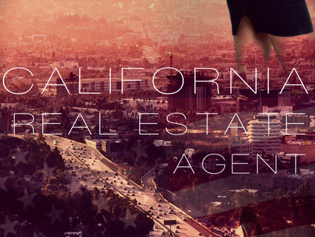 California Real Estate Agent (An Excerpt from Pretty Lies Perish)