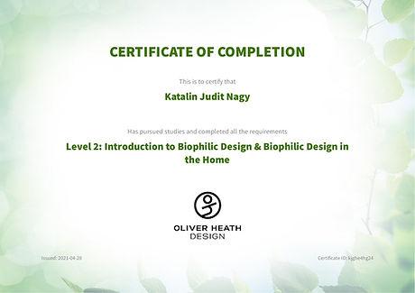 certificate-119497953.jpg
