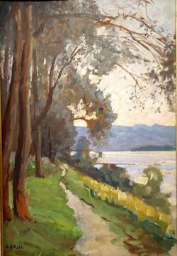 Donauweg bei Hundsheim