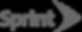 Sprint__turnkey project managment