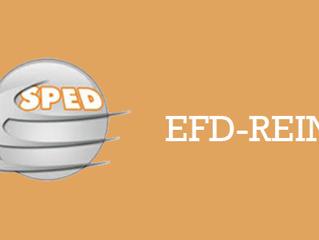 Leiautes EFD Reinf v.1.3