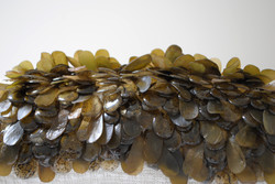 Seaweed sequins and beads
