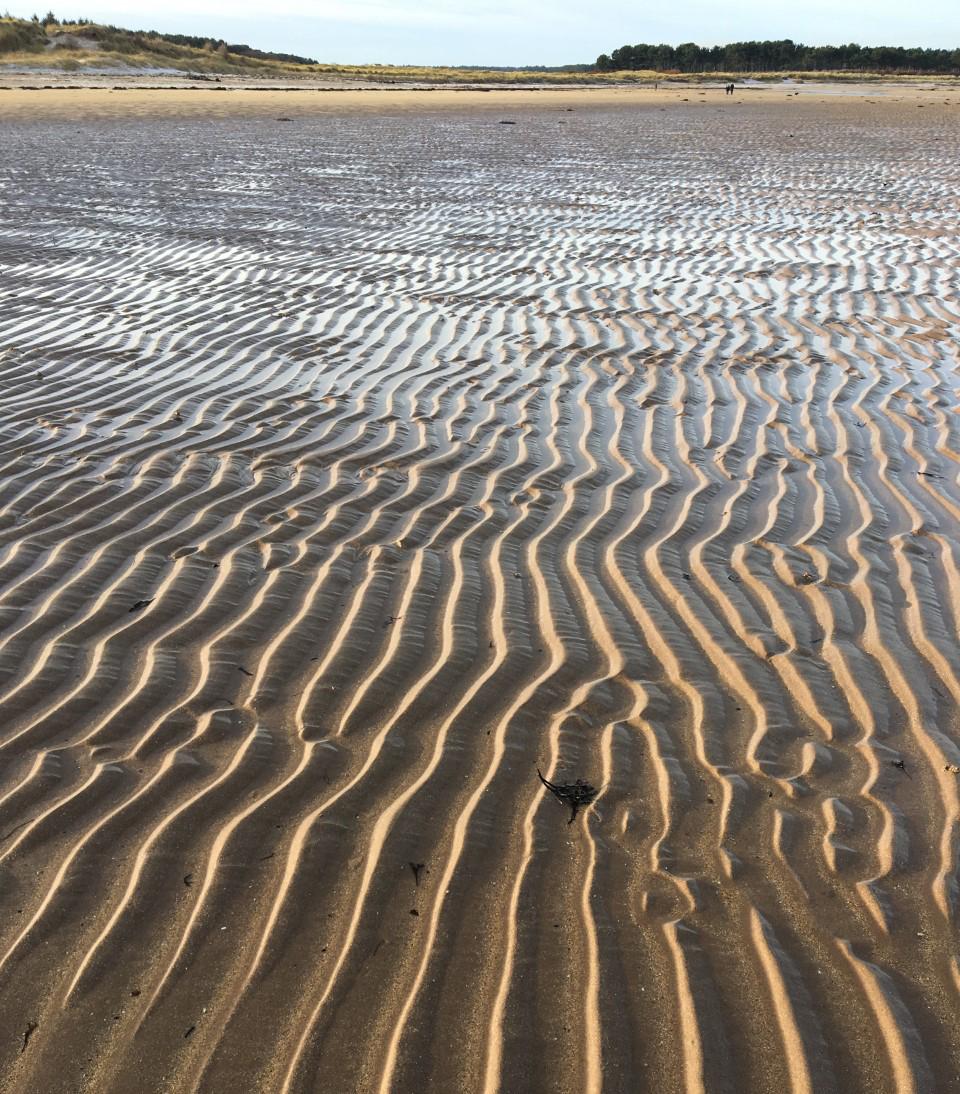 Sand ripples - yellowcraigs