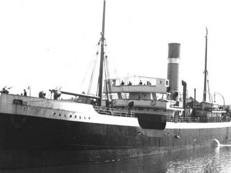 SS Palmella Ship No 233