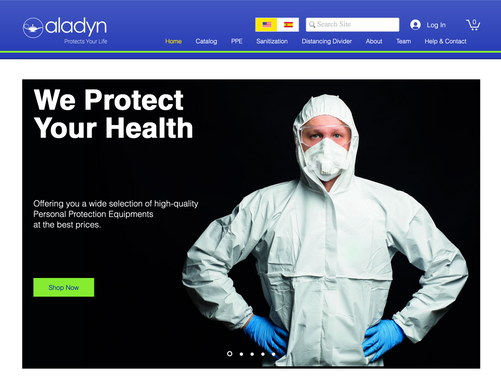 Aladyn Protection Systems