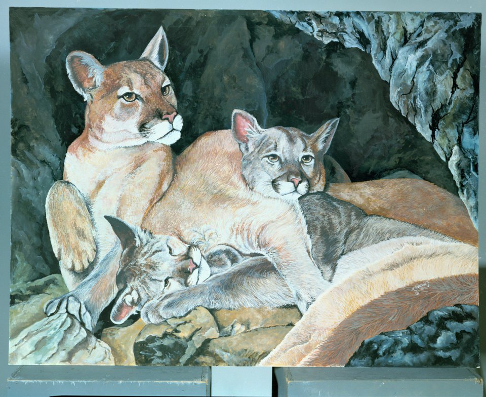 al wentzell wildlife art7
