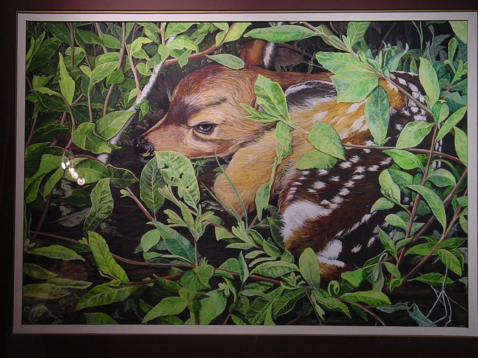 wildlife art al wentzell2