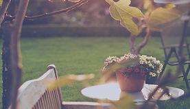 ensolarado do quintal