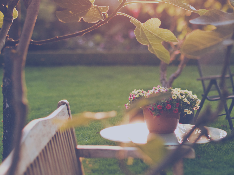 Sunny Villa Backyard