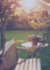 Landscape Lawn Care Seasonal Maintenance