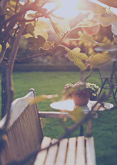Солнечный Backyard