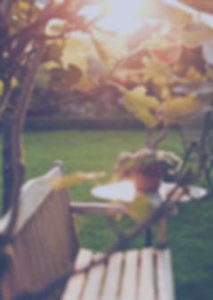 Sunny Backyard