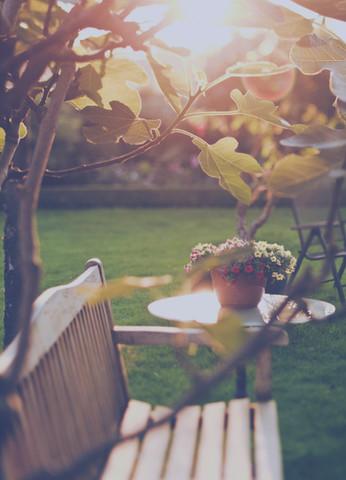 soleado patio trasero