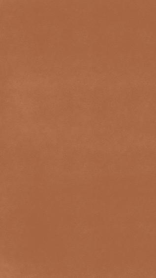 Story Blank Orange.png