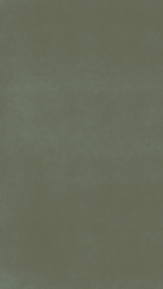 Story Blank Green.png