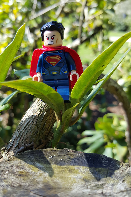 Superman / Erel Fishman-Furman