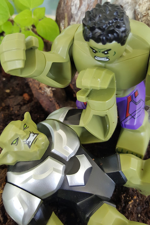 Goblin vs. Hulk / Erel Fishman-Furman