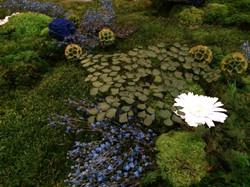 Végétaux_fleurs_stabilisés_desigreen