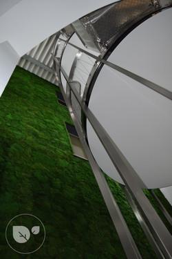 Mousse_stabilisée_vegetal_intérieur_décoration7desigreen