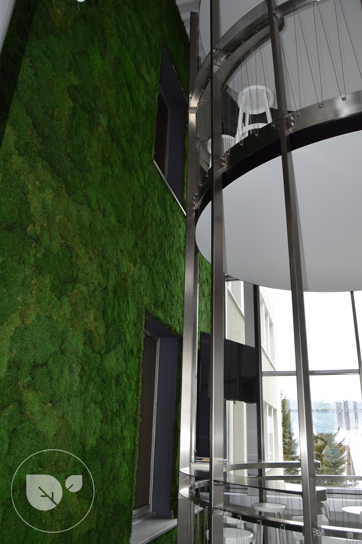 Mousse_stabilisée_vegetal_intérieur_décorationdesigreen