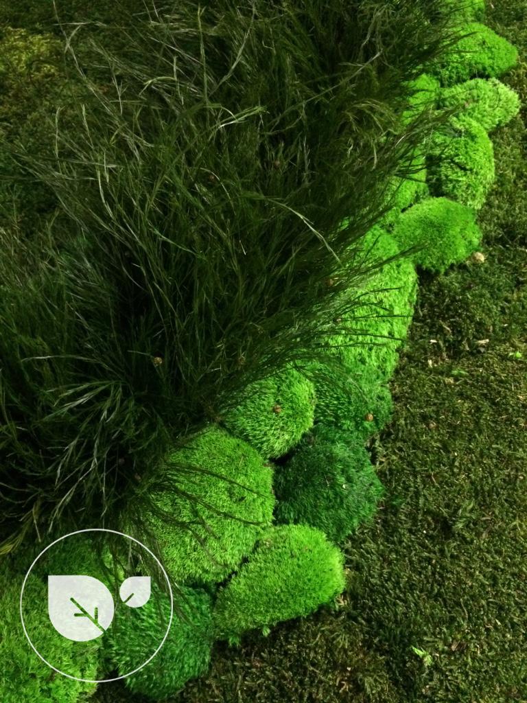 Mousse_stabilisée_vegetal_intérieur_décoration2desigreen