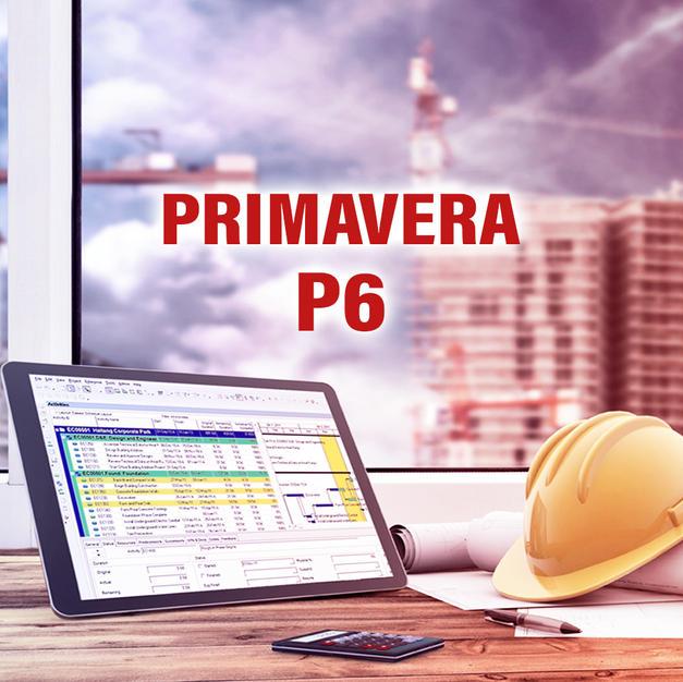 P6 Project Progress Reports