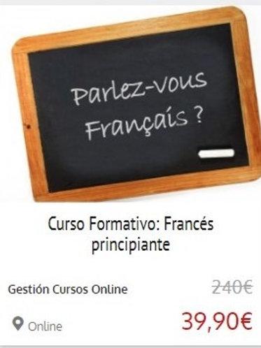 FRANCÉS PRINCIPIANTE