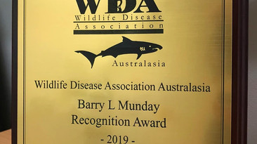 Dr. Laura Grogan is WDAA's 2019 recipient of the Barry L. Munday Recognition Award!