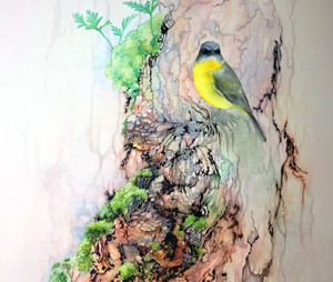 "Experimenting with style and texture in watercolours - ""Eastern Yellow Robin"" WIP 1-7"