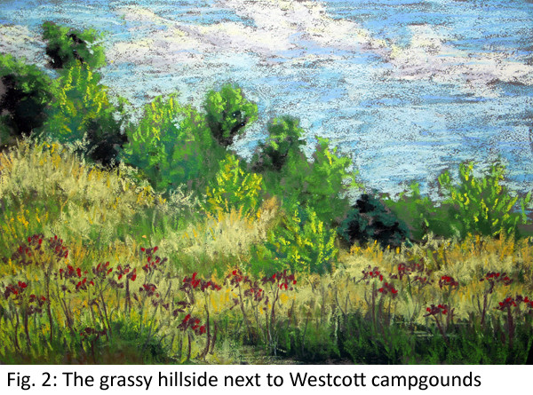 Westcott campgrounds Laura Grogan 600.jpg