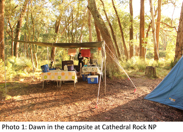 Dawn at Cathedral Rock NP 1 Laura Grogan 600.jpg