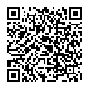 案山子コンテスト2020オンライン投票こちら