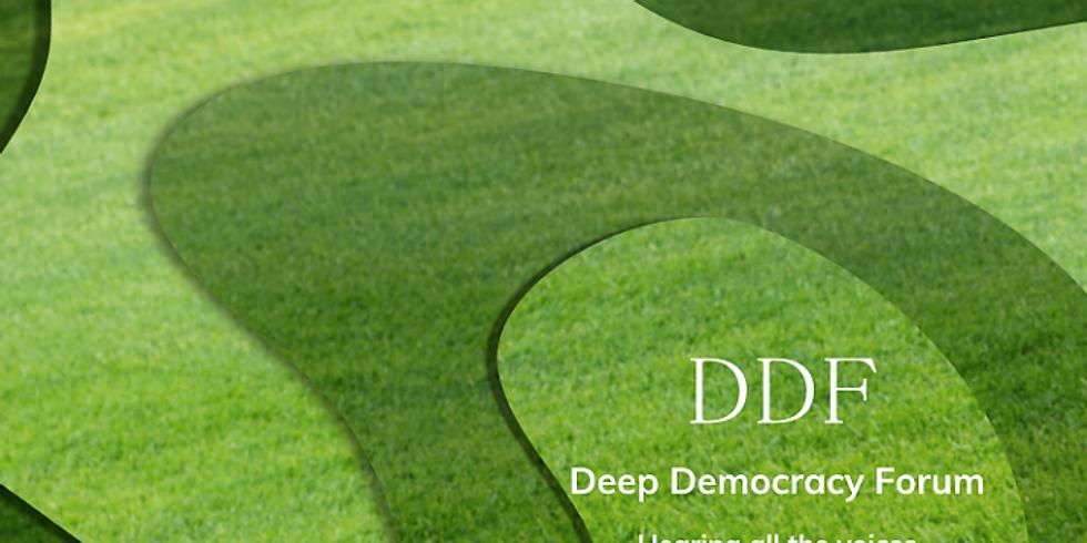Deep Democracy Forum