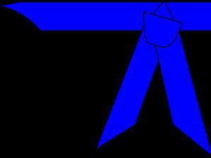 Examens blauwe gordel Hapkido