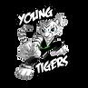 YoungTigersBlancLogo.png