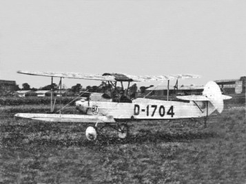 Flightglobal Albatros L 82b, Orly, August 1929