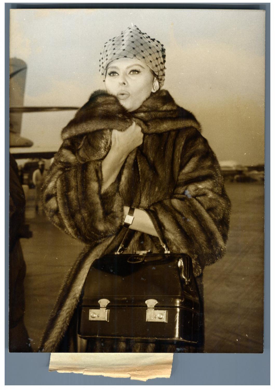 Sophia Loren (2)