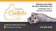 CA-Curlfolie-recto.jpg