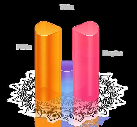 Vata-Pitta-PK-V.png