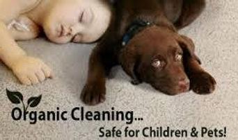 carpet cleaning ratho